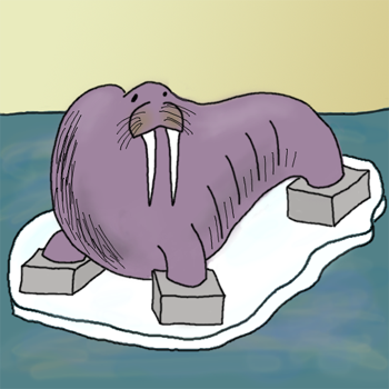 Cementbeat Walrus