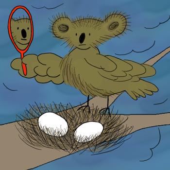 Creche Koalabird